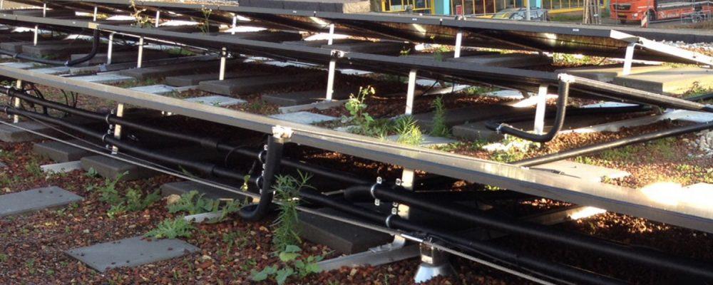 Triple Solar Amundsenhof PVT panelen met groendak