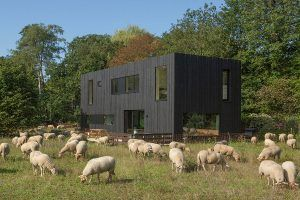 PVT-paneel-bron-warmtepomp-Tilburg-Joris-verhoeven-desingn-home-black-solar-panel-zonnepaneel-heatpump-summer